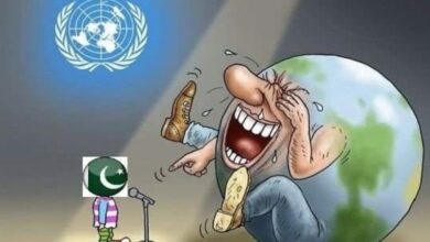 Photo of Pakistan to remain on FATF grey list